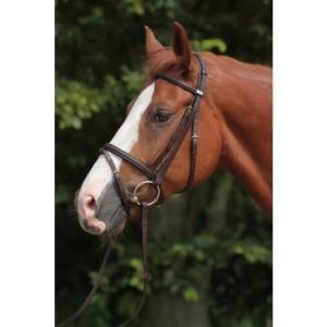 330985f969aa4 Biotyna Horse Master